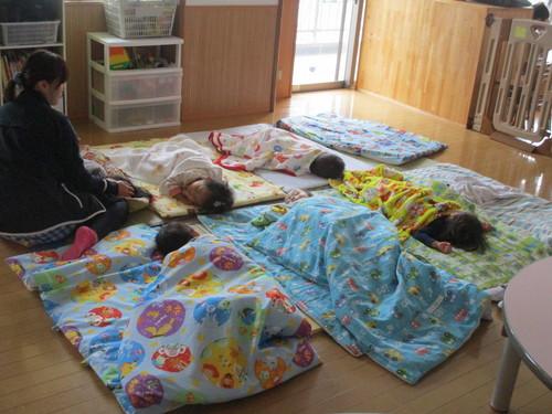 たんぽぽ午睡①IMG_1385.JPG
